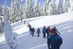 wycieczki na rakietach śnieżnych w Bieszczadach